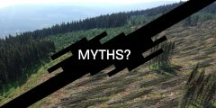 Industiral Forestry Myths